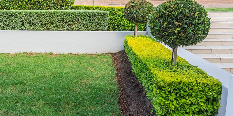 Commercial Landscapers