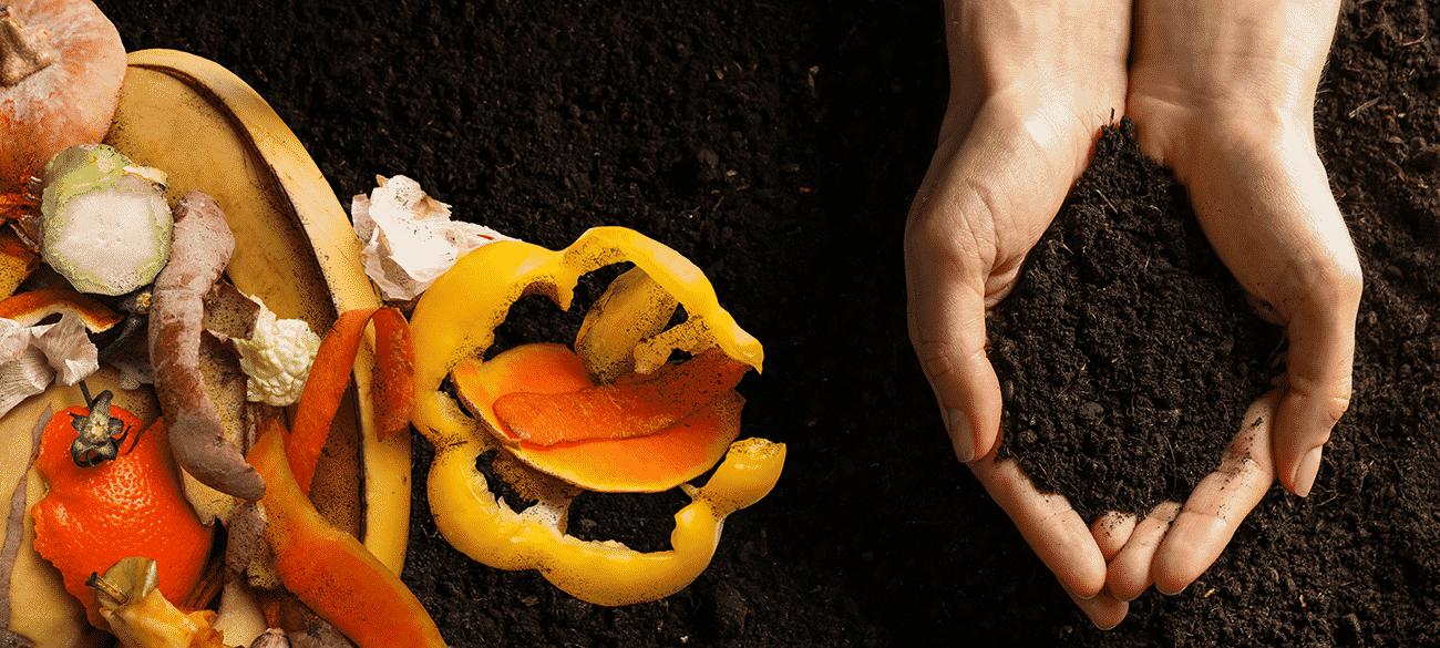 Composting For Landscape