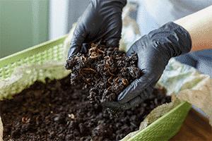Vermiculture composting for landscape